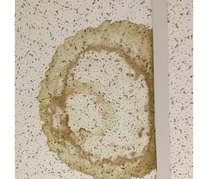 Ceiling Tile Stains