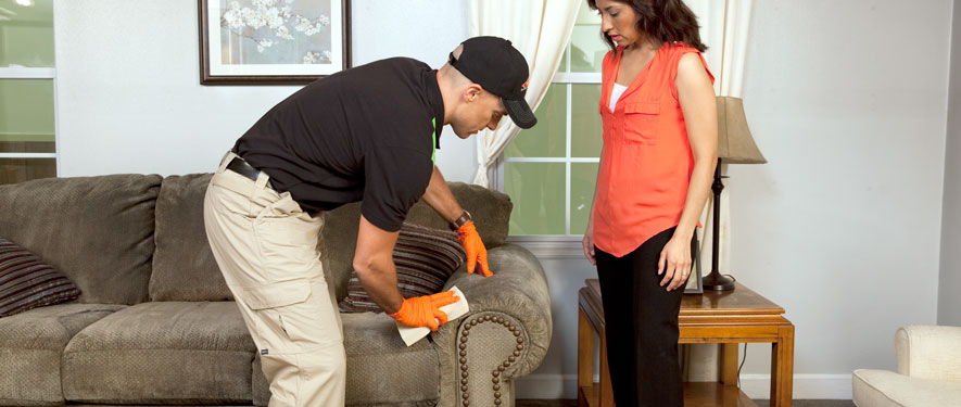 Arcadia, CA carpet upholstery cleaning