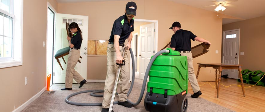 Arcadia, CA cleaning services